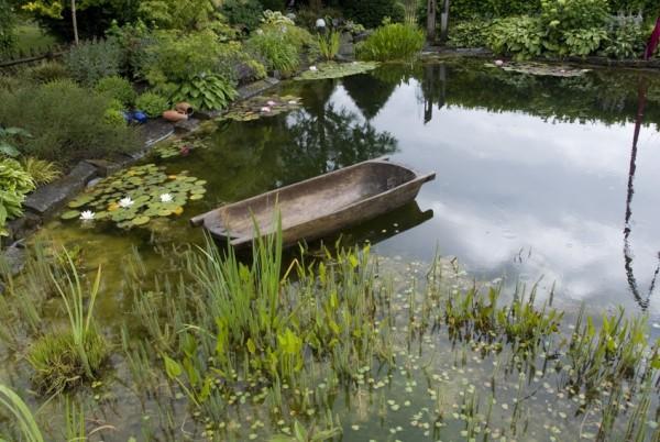 Repositionspflanzen für Kiesfilter